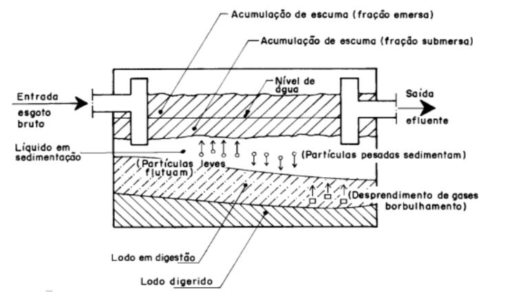 Funcionamento geral de um tanque séptico.