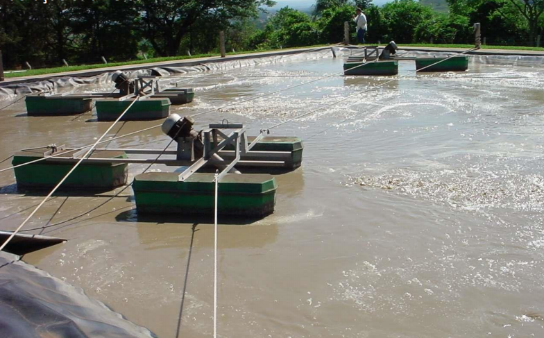 Lagoa aerada na ETE de Ituiutaba (MG).